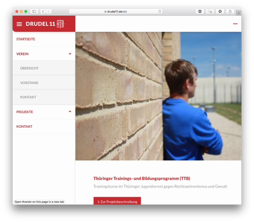 Screenshot: Drudel11 Website